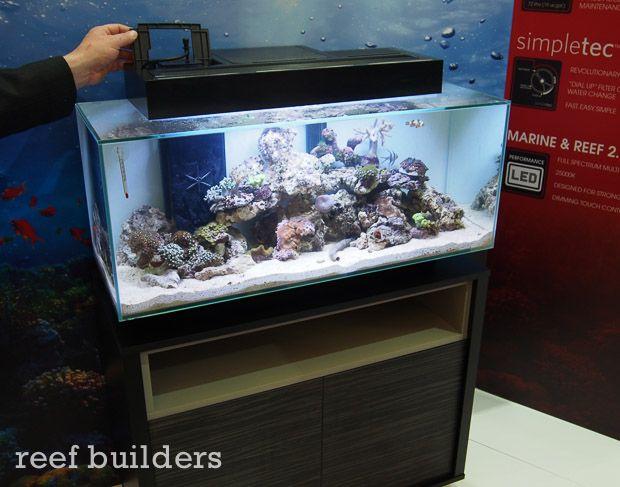 9 best bigg rigg aquariums images on pinterest fish for Fish tank camera