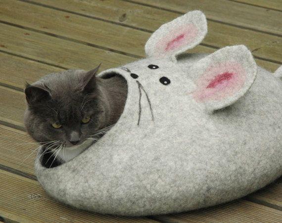 535 Best Crazy Cat Lady Images On Pinterest Cat Stuff