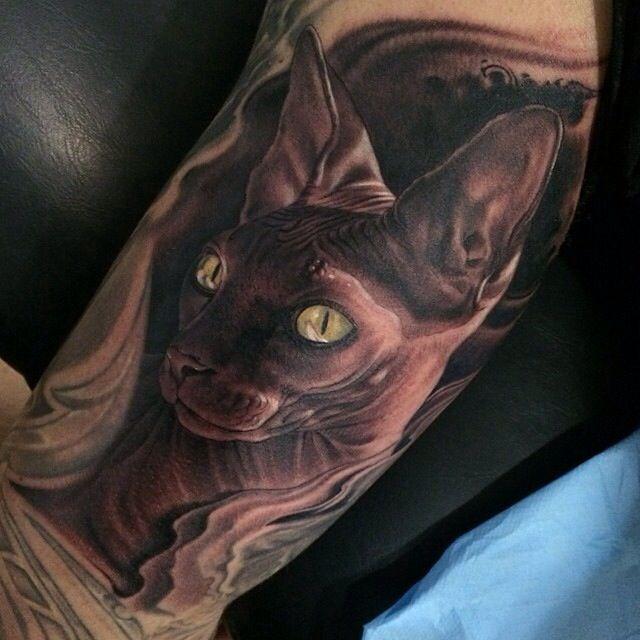 Sphynx cat portrait hairless cat tattoo via fred tattoo for Hairless cat tattoo