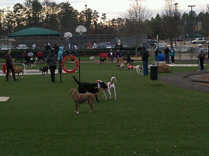 Newtown Dog Park Alpharetta Ga