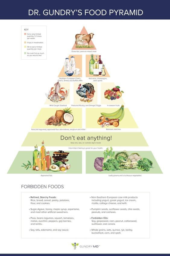 """The """"Gundry Food Strategy"""" For Vitality"""