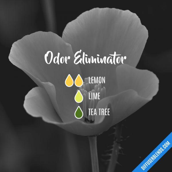 Odor Eliminator - Essential Oil Diffuser Blend