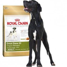 Alimento a medida para perros de la raza Gran Danés de más de 24 meses. #perros #dogs #maskokotas #royalcanin