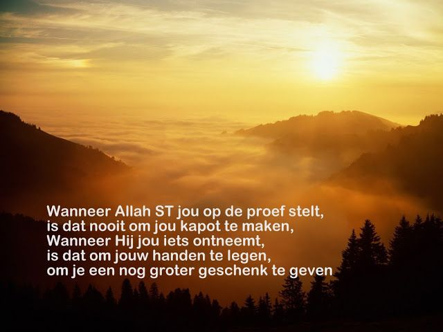 Citaten Uit Koran : Best nederlandse quotes islam images on pinterest