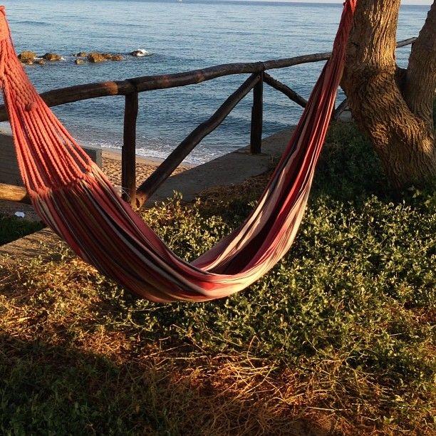 ...morning hammock time