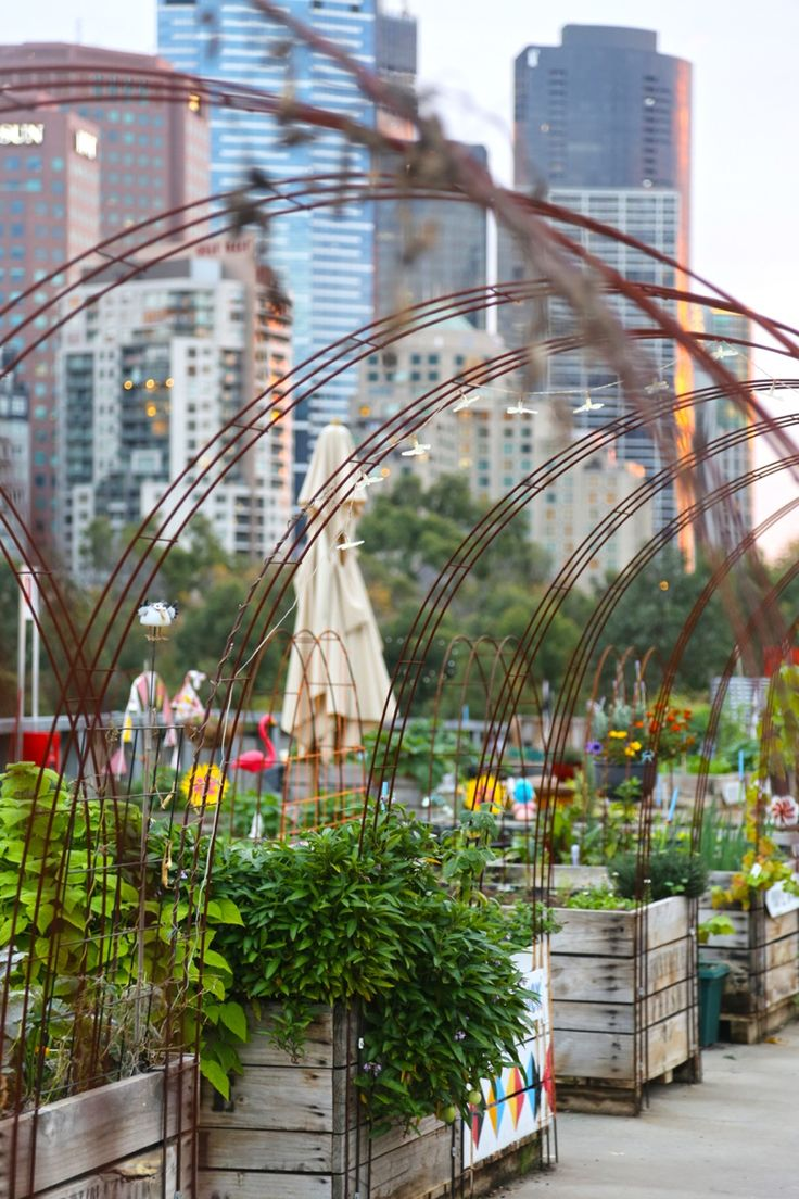 Rooftop community garden at Federation Square in Melbourne, Australia.