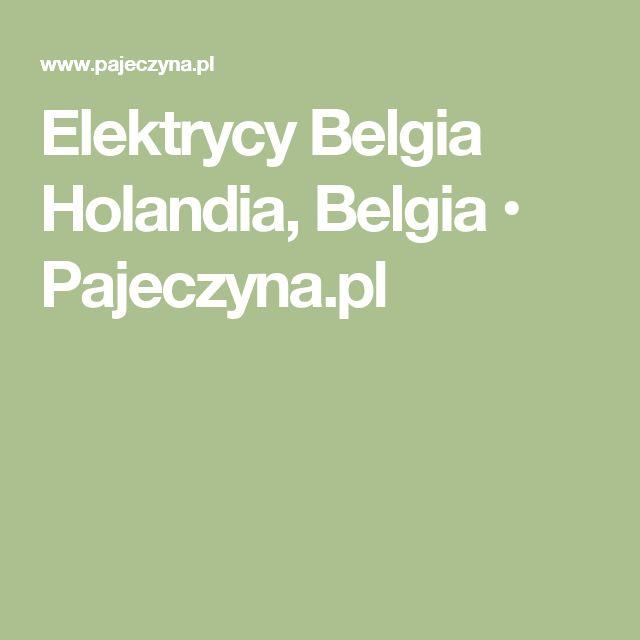 Elektrycy Belgia Holandia, Belgia • Pajeczyna.pl