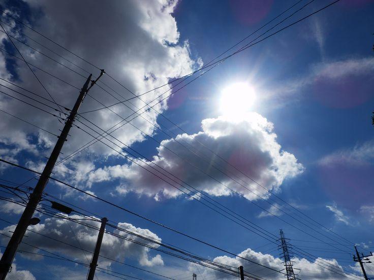 日差し(Sunlight)