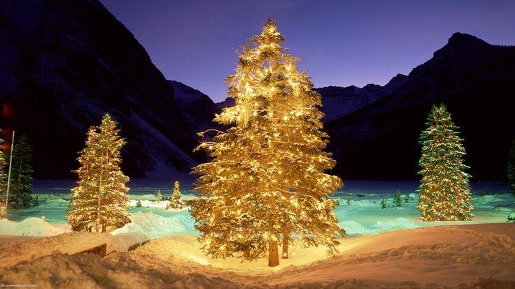 χριστουγεννιάτικα δέντρα σε μια κοιλάδα του χειμώνα διανυσματικό
