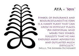 Aya - fern tattoo meaning
