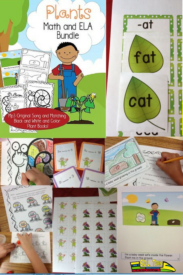 This fantastic plant bundle has it all! It also reinforces Math/ELA skills as you teach about plants. We have fun plant task cards, plant scoot games, printables, an Mp3 song about the plant cycle, along with a Plant Song book in color for the teacher and a black and white plant coloring book for the kiddos. Over 90 pages in this plant bundle to keep your students interested in plants for awhile.