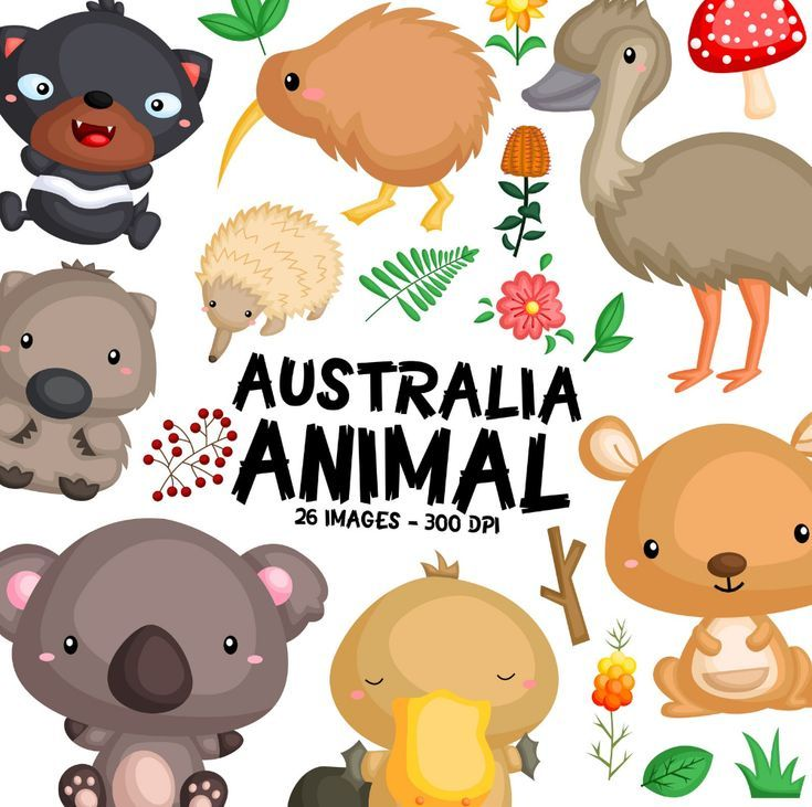 Australia Animal Clipart Cute Animal Clip Art Australia Nature Free Svg On Request Animal Clipart Clip Art Australia Animals