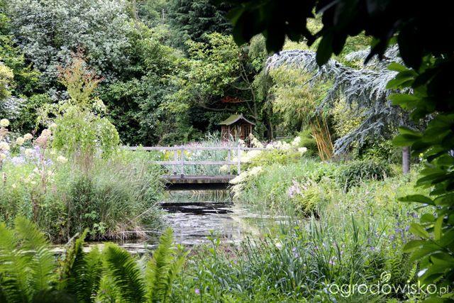 Галерея - Английский парк - Gooderstone водные сады - Ogrodowisko