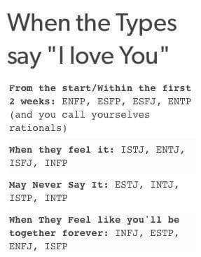 ENTJ dating INTP