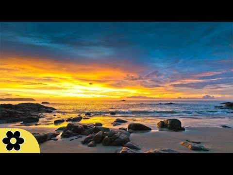 "8 Hour Deep Sleep Music, Peaceful Music, Relaxing, Meditation Music, Sleep Meditation Music, ✿2987C - ""YellowBrickCinema's Sleep Music is the perfect relaxin..."