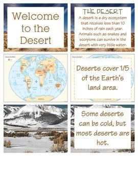 Teaching a unit on the desert?  You'll find everything you could need for mini-lessons, centers, and student research projects.  Print, laminate, and cut out these 7 activities focusing on the desert: facts, fundamental needs, water cycle, life cycle of reptiles, and much more!
