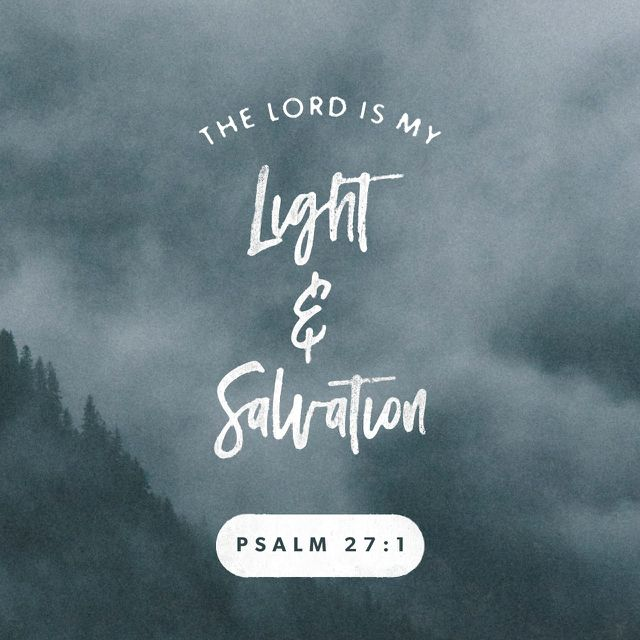 1 The Lord is my light and my salvation; whom shall I fear? The Lord is the stronghold of my life; of whom shall I be afraid? (Psalms 27:1 ESV)