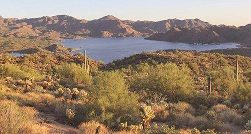 125 best arizona wildlife fishing images on pinterest for Fishing in phoenix arizona