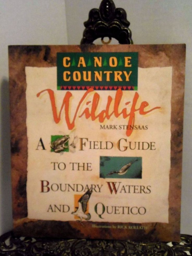 100 best animals fish insects birds images on pinterest canoe country wildlife field guide to the north woods boundary waters quetico sciox Gallery