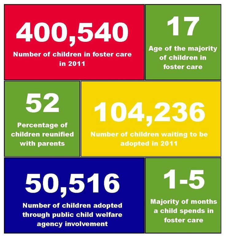 10 Best Adoption Statistics Images On Pinterest Adoption