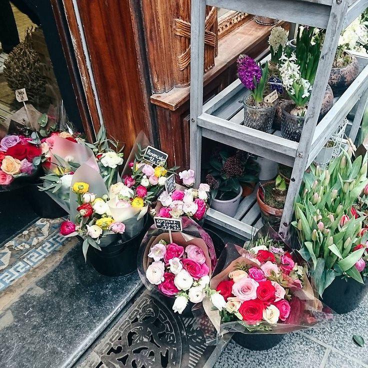 Sending You All Some Pretty Virtual Flowers Chris Has