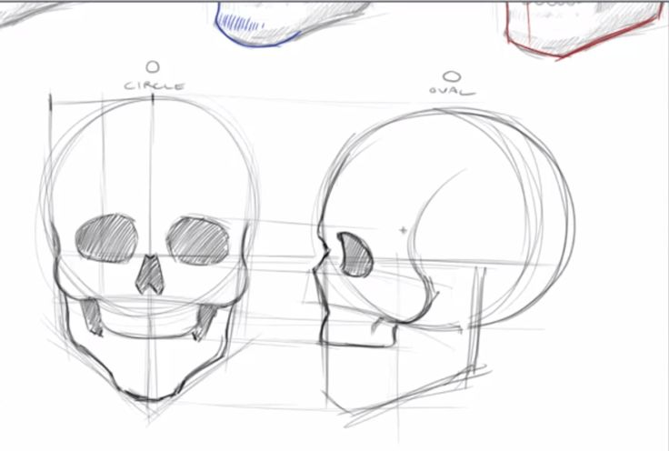 How To Draw Skulls - Draw Central