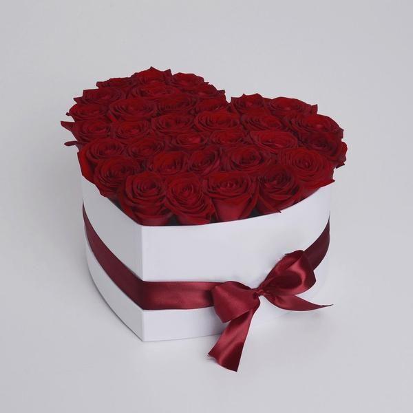 Collécion San Valentine para dia de San Valentin