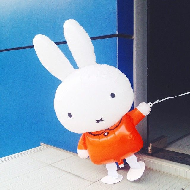 Miffy going for a walk!