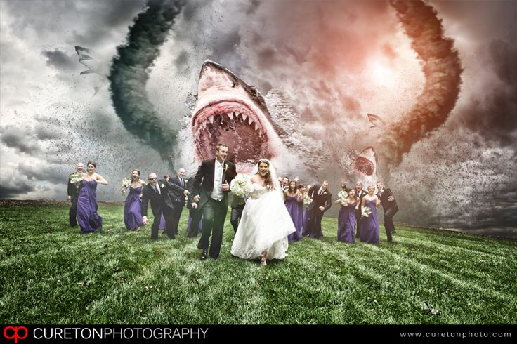 Sharknado Wedding Photo. #dinosaur wedding #sharkweek #shark wedding