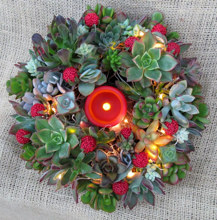 Mini Lights In A Fresh Succulent Wreath With Flame less