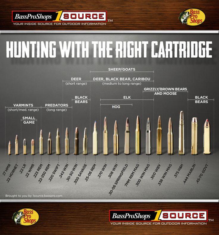 Rifles calibers for hunting animals