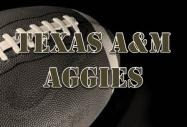 Cheap 2013 Texas AM vs Auburn Football Tickets (174623)