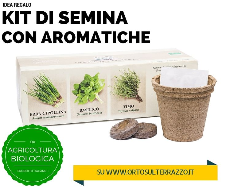 19 best images about idee per l 39 agricoltura urbana on for Semina basilico in vaso