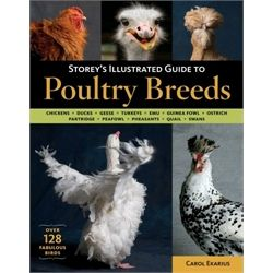 Storey's Illustrated Guide to Poultry Breeds from My Pet Chicken