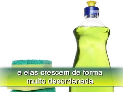 Receita de Detergente Caseiro - Receita Toda Hora