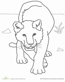 80 best images about coloriage pour lily rose on pinterest for Lioness coloring pages