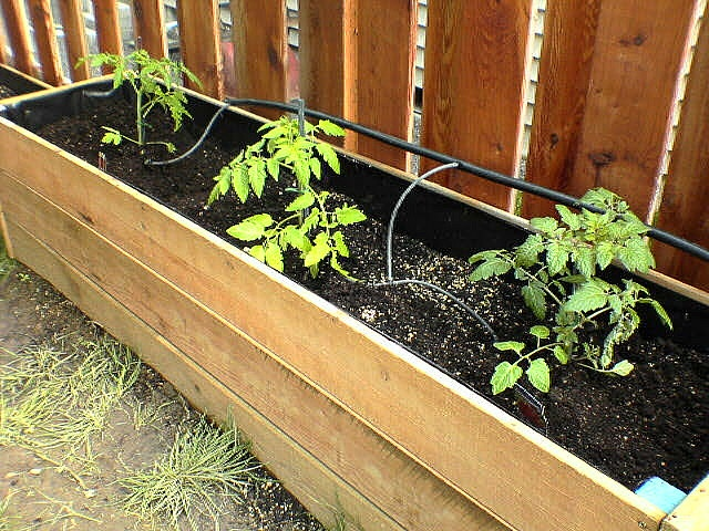 Installing A Drip Irrigation System