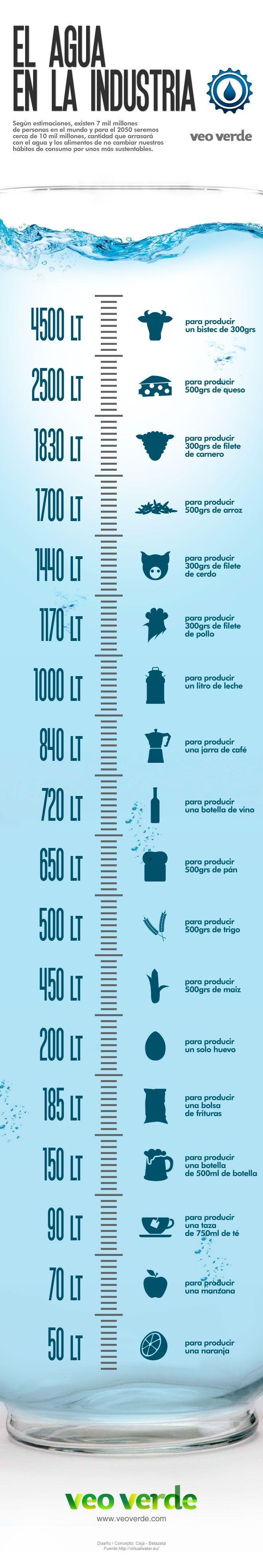 Infografia: Conoce el gasto de agua en la producción de alimentos, vía VeoVerde