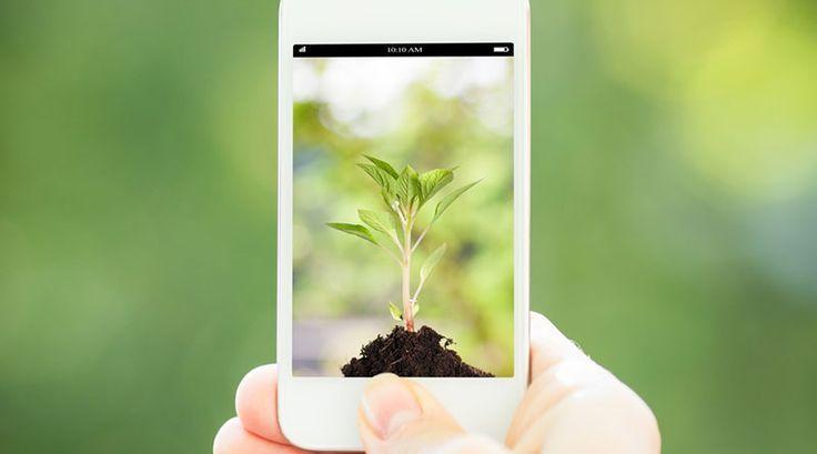 Awesome Business phone 2017: Canggih Sistem Ini Mampu Pantau Bak Sampah Via SMS! - Mahasiswa Institut Informa... INFOKAMPUSNEWS Check more at http://sitecost.top/2017/business-phone-2017-canggih-sistem-ini-mampu-pantau-bak-sampah-via-sms-mahasiswa-institut-informa-infokampusnews/