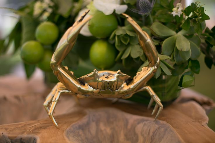 BRASS SEA CRAB @sperrytentsaustralia Absolute beach front weddings & events at @elementsofbyron beautiful capture by @melita_photo Floral design by @bowerbotanicals Furniture & Styling by @sperrytentsbyronbay #sperrycorporateevents #sperrylove #sperrytents @sperrytents @sperrytents_sunshinecoast @sperrytentsvictoria @sperrytentssydney #byronbay #byronbayconferencing #bbeb #elementsofbyron #heartofthebay #byronbayweddings