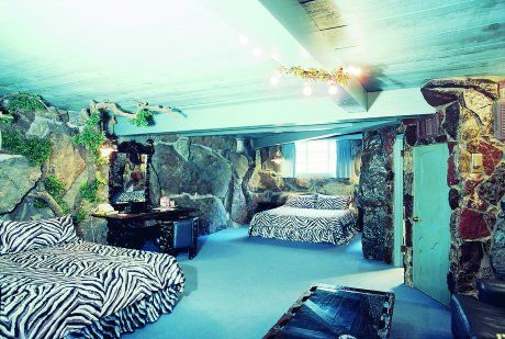 17 best images about zebra decor on pinterest hot pink for Cheetah themed bedroom ideas