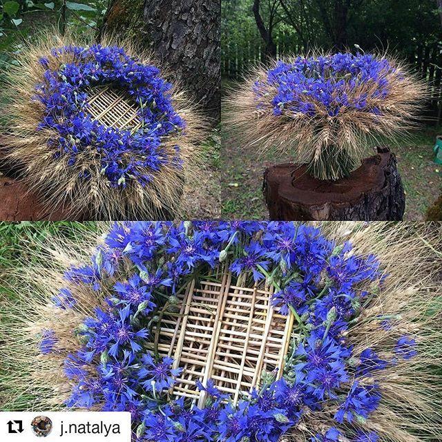 А вот и первая красота #onegabaldeli! Желянина Наталья, знакомьтесь!) @j.natalya Любитель глубокого индиго. Вам! #onegaflora #floristiskrådginving #онегафлора