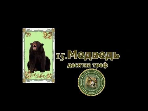 (20) Значение карты Ленорман: Медведь - YouTube
