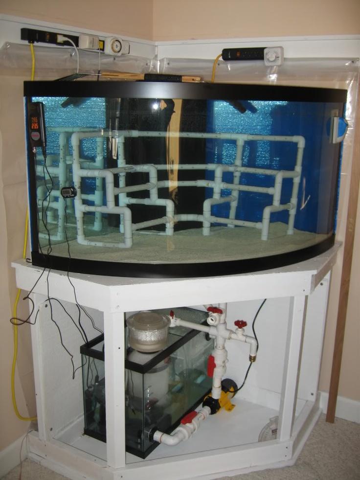 Pvc For Rockwork Reef Tank Pinterest Marine Fish Reef Tanks And Aquariums