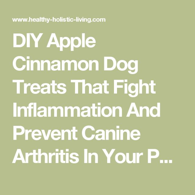 DIY Apple Cinnamon Dog Treats That Fight Inflammation And Prevent Canine Arthritis In Your Pet! - Healthy Holistic Living