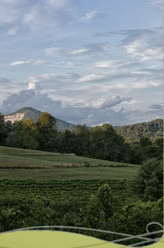 Crane Creek Vineyards in north Georgia