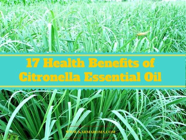 Discover 17 health benefits of citronella essential oil
