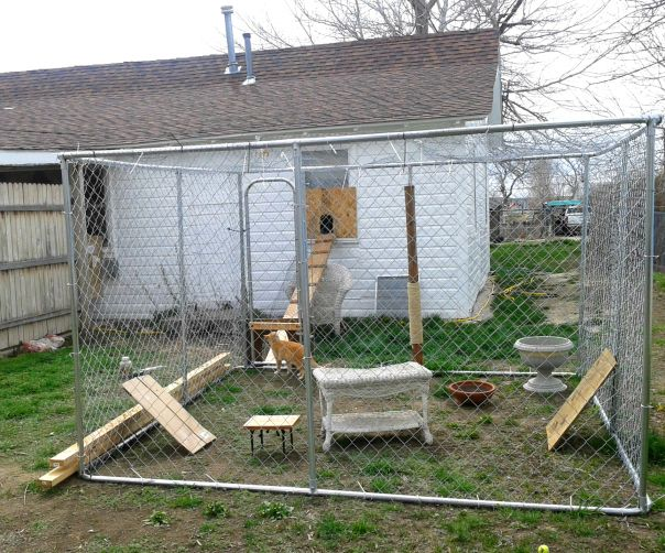 Posts About Catio On Catty Shack Designs