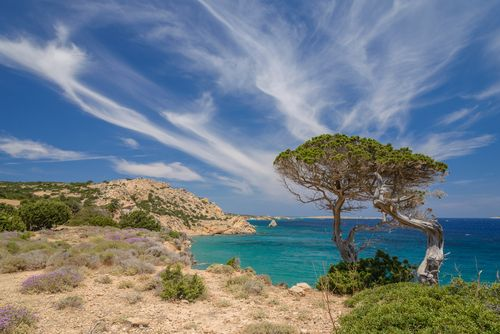 Koufonisia: Greece's secret isles Overshadowed by its flashier neighbours, this trio of islands combine to form a place of sheer, tranquil beauty.