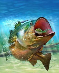 bass - Fish Art by Tommy Kinnerup
